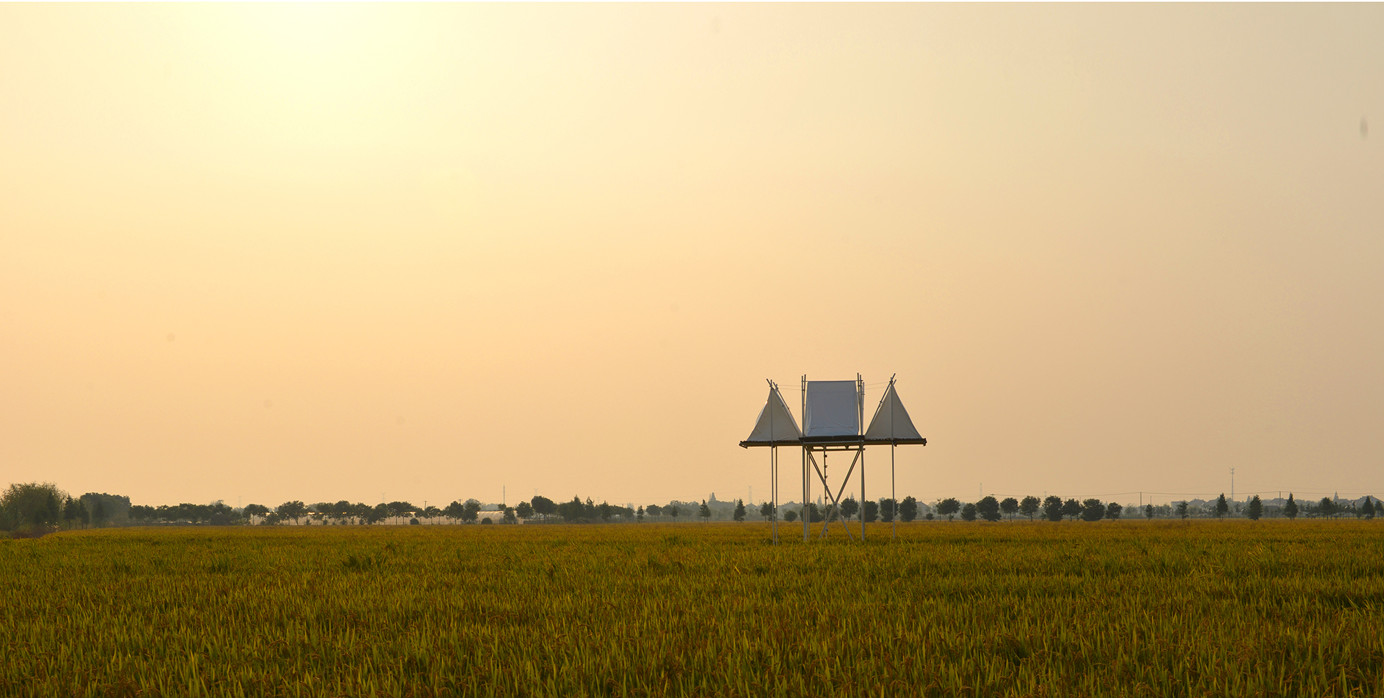 G-稻田与漂浮的庇护所 (4)